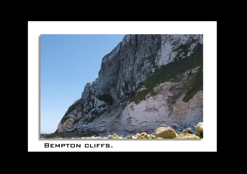 Bempton Cliff at low tide