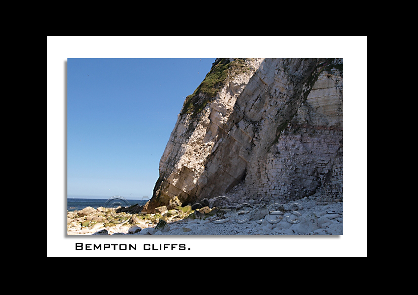 Chalk cliffs at Bempton